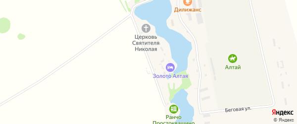Алтайская улица на карте села Новотырышкино с номерами домов