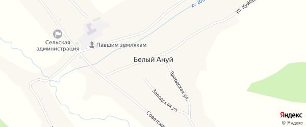 Заводская улица на карте села Белый Ануй с номерами домов