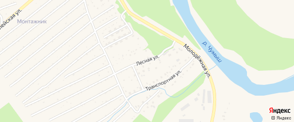 Лесная улица на карте Заринска с номерами домов
