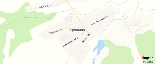 Карта села Гришино в Алтайском крае с улицами и номерами домов
