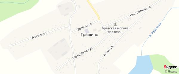 Молодежная улица на карте села Гришино с номерами домов
