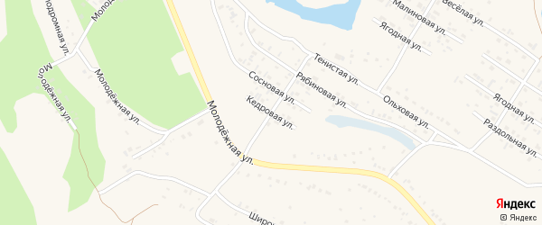 Кедровая улица на карте Заринска с номерами домов