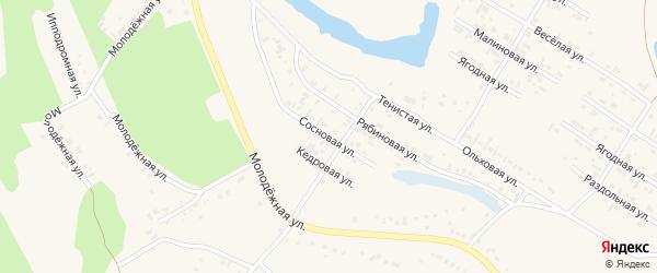 Сосновая улица на карте Заринска с номерами домов