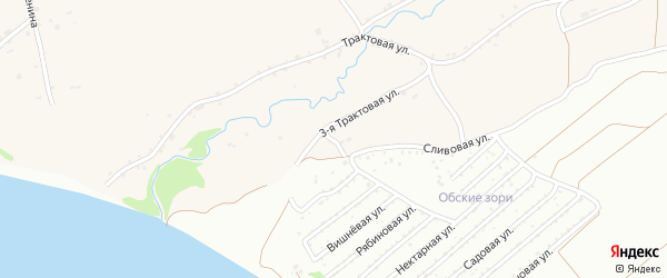Сливовая улица на карте Фоминского села с номерами домов