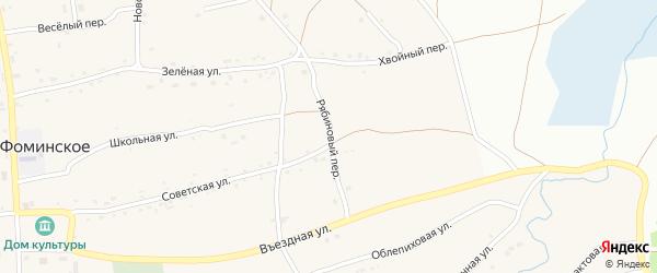 Рябиновый переулок на карте Фоминского села с номерами домов
