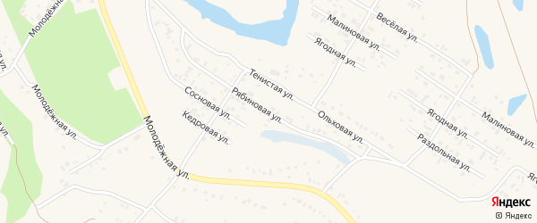 Рябиновая улица на карте Заринска с номерами домов