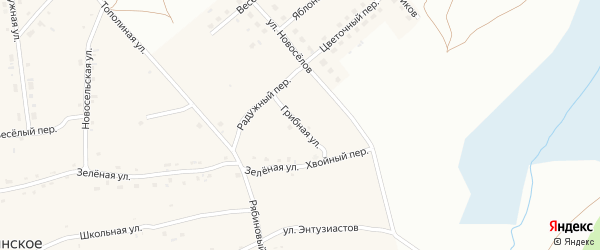 Грибная улица на карте Фоминского села с номерами домов