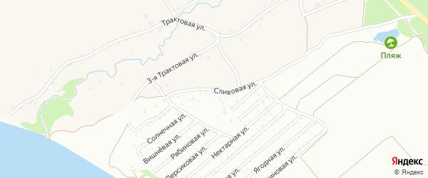 Сливовая улица на карте садового некоммерческого товарищества Обские зори с номерами домов