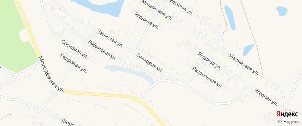 Ольховая улица на карте Заринска с номерами домов