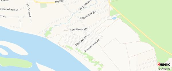 Карта садового некоммерческого товарищества Обские зори города Бийска в Алтайском крае с улицами и номерами домов