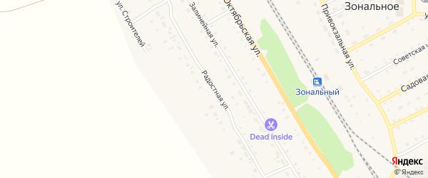 Радостная улица на карте Зонального села с номерами домов
