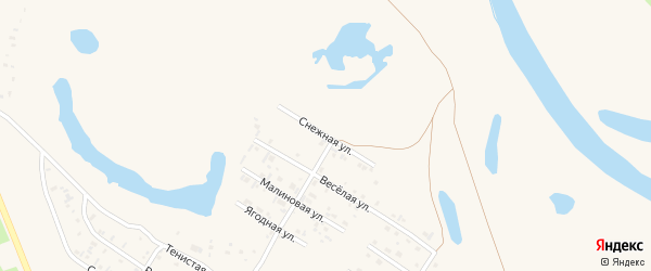 Снежная улица на карте Заринска с номерами домов