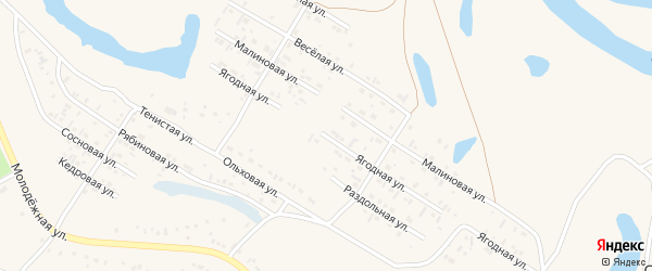 Ягодная улица на карте Заринска с номерами домов