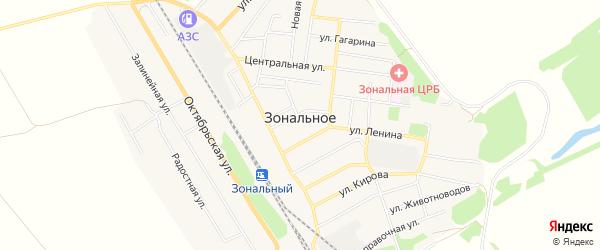 Карта Зонального села в Алтайском крае с улицами и номерами домов