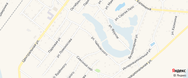 Улица Чайковского на карте Заринска с номерами домов