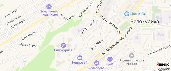Школьный переулок на карте Белокурихи с номерами домов