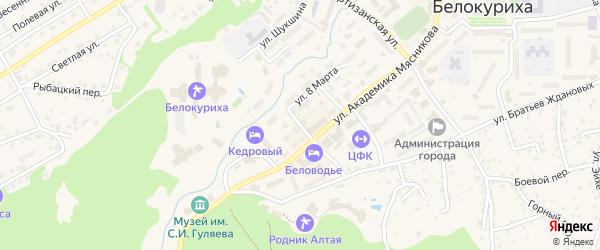 Речной переулок на карте Белокурихи с номерами домов