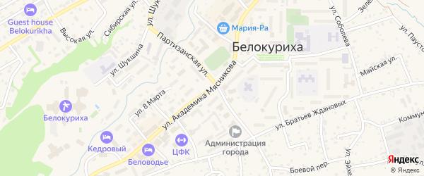 Улица Академика Мясникова на карте Белокурихи с номерами домов
