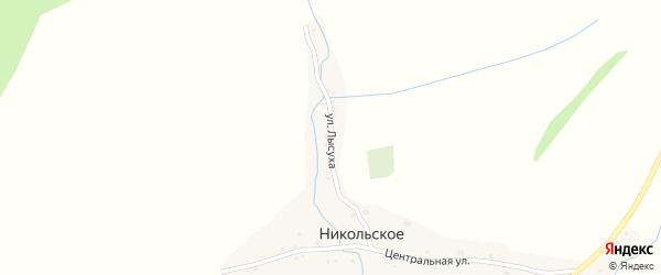 Улица Лысуха на карте Никольского села с номерами домов