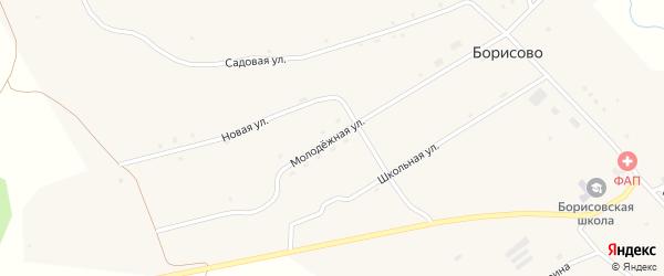 Молодежная улица на карте села Борисово с номерами домов