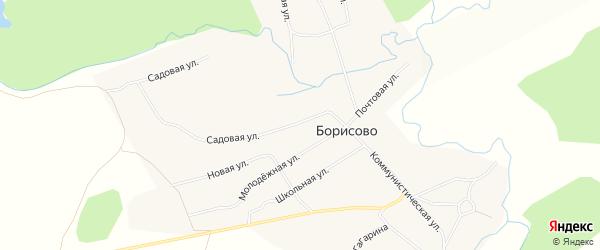 Карта села Борисово в Алтайском крае с улицами и номерами домов