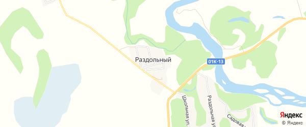 Карта Раздольного поселка в Алтайском крае с улицами и номерами домов