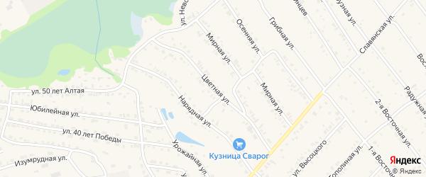 Цветная улица на карте Белокурихи с номерами домов