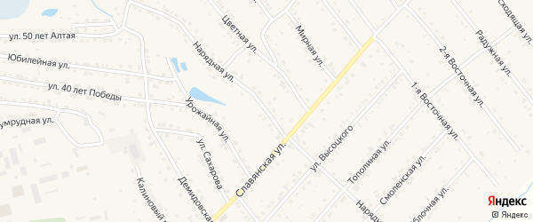 Нарядная улица на карте Белокурихи с номерами домов