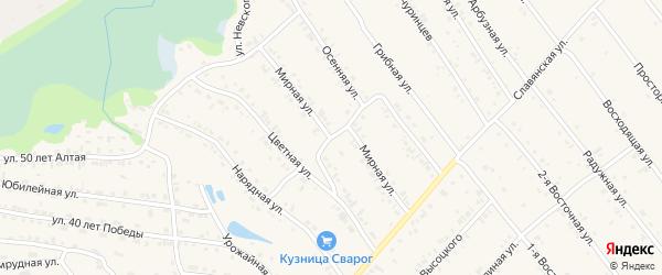 Мирная улица на карте Белокурихи с номерами домов