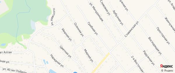 Осенняя улица на карте Белокурихи с номерами домов