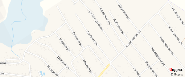 Грибная улица на карте Белокурихи с номерами домов