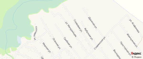 Улица Мичуринцев на карте Белокурихи с номерами домов