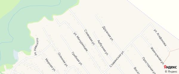 Сливовая улица на карте Белокурихи с номерами домов