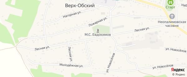 Лесная улица на карте Верха-Обского поселка с номерами домов