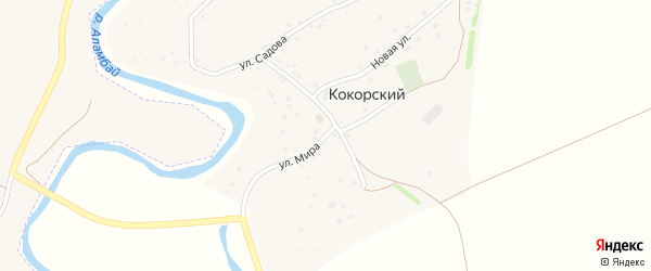 Улица Мира на карте поселка Кокорского с номерами домов