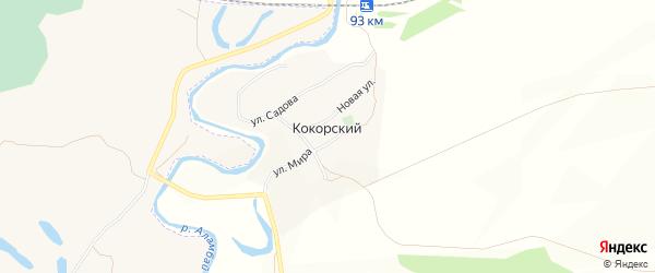 Карта поселка Кокорского в Алтайском крае с улицами и номерами домов