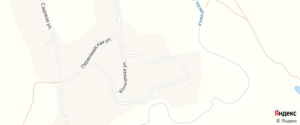 Кольцевая улица на карте села Новой Чемровки с номерами домов
