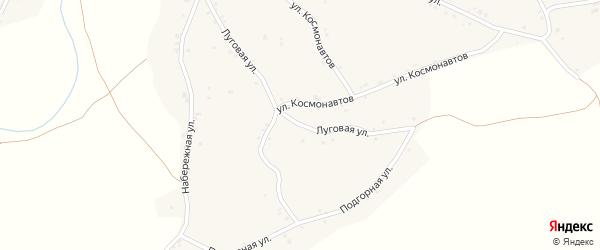 Луговая улица на карте территории сдт Изобилия с номерами домов