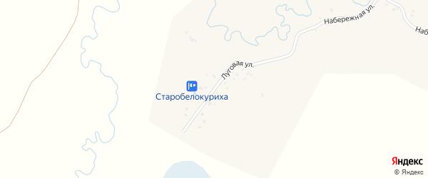 Луговая улица на карте села Старобелокурихи с номерами домов
