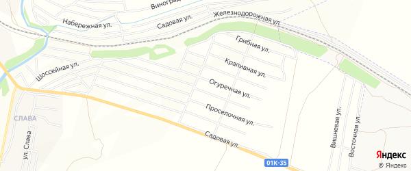 Карта территории сдт Домостроителя в Алтайском крае с улицами и номерами домов