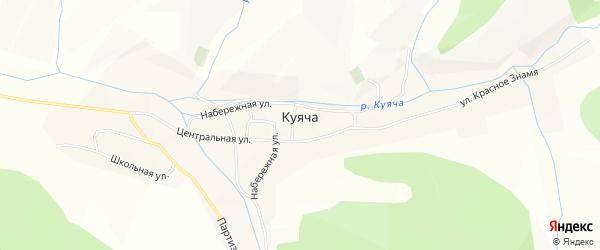 Карта села Куячи в Алтайском крае с улицами и номерами домов