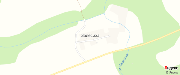 Центральная улица на карте поселка Залесихи с номерами домов