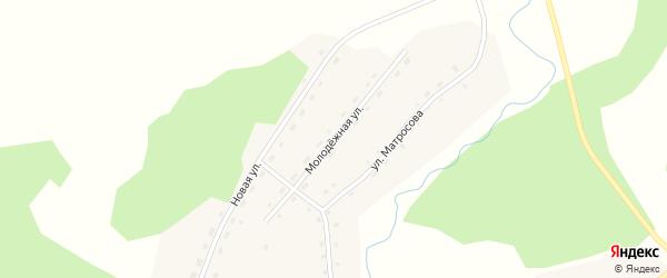 Молодежная улица на карте села Новодраченино с номерами домов