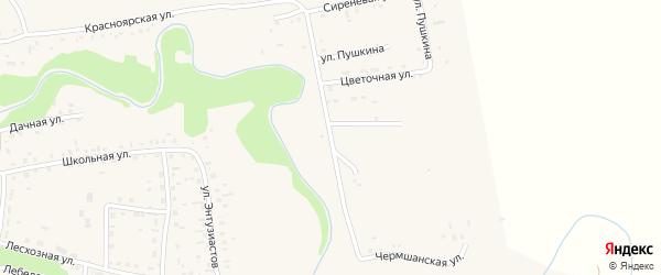 Улица Пушкина на карте Смоленского села с номерами домов