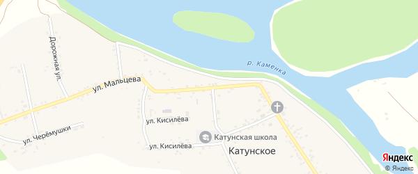Улица Мальцева на карте Катунского села с номерами домов