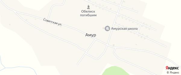 Зеленая улица на карте села Амура с номерами домов