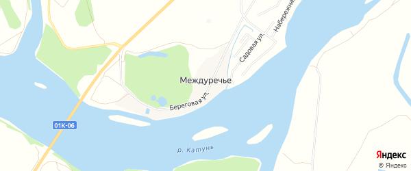 Карта поселка Междуречья в Алтайском крае с улицами и номерами домов