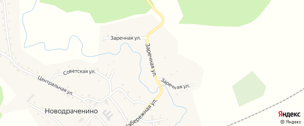 Заречная улица на карте села Новодраченино с номерами домов