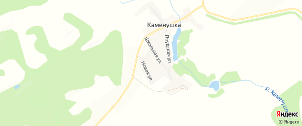Карта поселка Каменушки в Алтайском крае с улицами и номерами домов