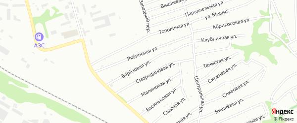 Березовая улица на карте садового некоммерческого товарищества Монтажника с номерами домов